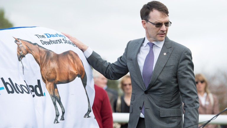 Aidan O'Brien: achieved a 1-2-3-4 in the Dewhurst