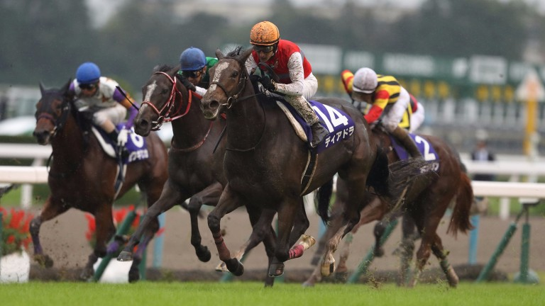 Deirdre (orange cap) comes with a late swoop to land the Shuka Sho at Kyoto on Sunday
