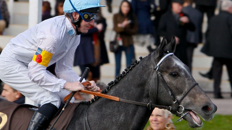 Boomshackerlacker: gelding won five times and was a star for George Baker