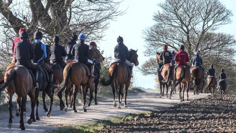 Racing Welfare and the NTF have highlighted the mental health risks associated with the training profession