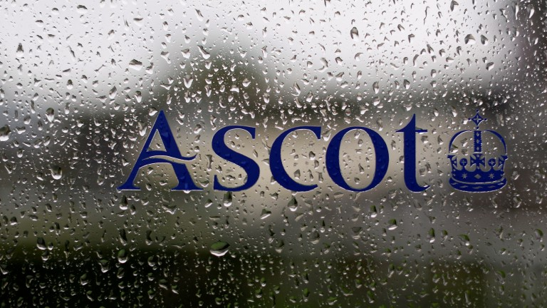 Ascot has seen a total of 12mm of rain so far this week with more to come