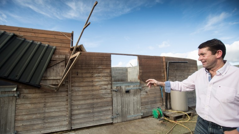 Trainer Conor O'Dwyer surveys the damage to a stable block used for his retired racehorses