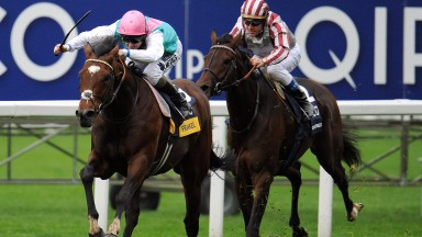 Frankel wins the Qipco Champions Stakes from Cirrus Des Aigles in 2012 (Photo by Alan Crowhurst/Getty Images)