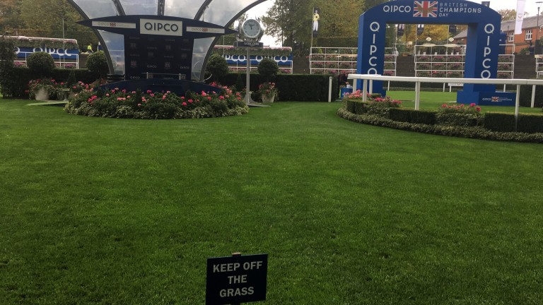 Keep off the grass: preparations continue apace in the paddock and winner's enclosure