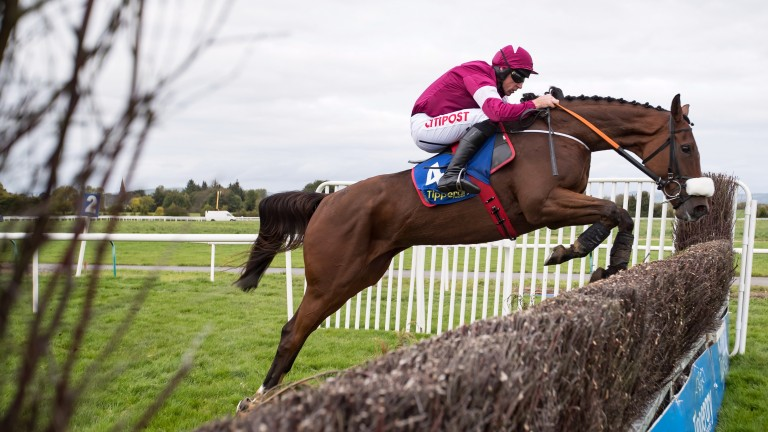 Death Duty could be charting a path to Limerick this Christmas for the Greenmount Park Novice Steeplechase (Grade 2)