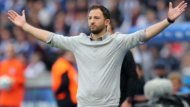 Schalke head coach Domenico Tedesco