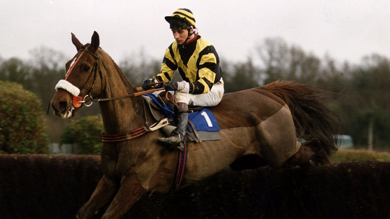 Master Oats jumps the last at Lingfield
