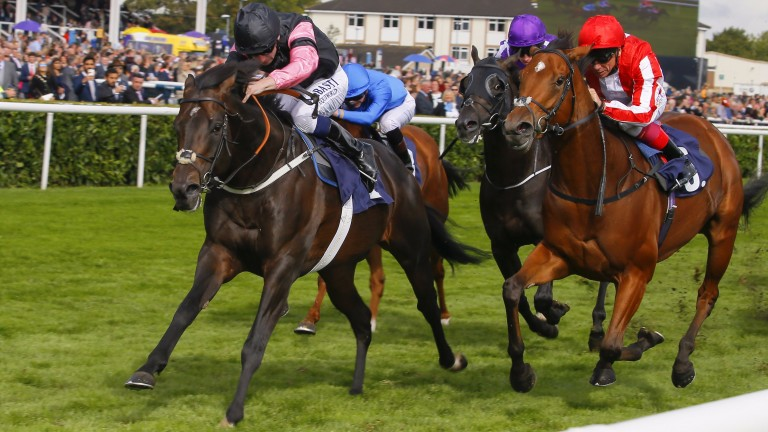 Aclaim (pink sleeves) asserts his lead in the Park Stakes at Doncaster in September