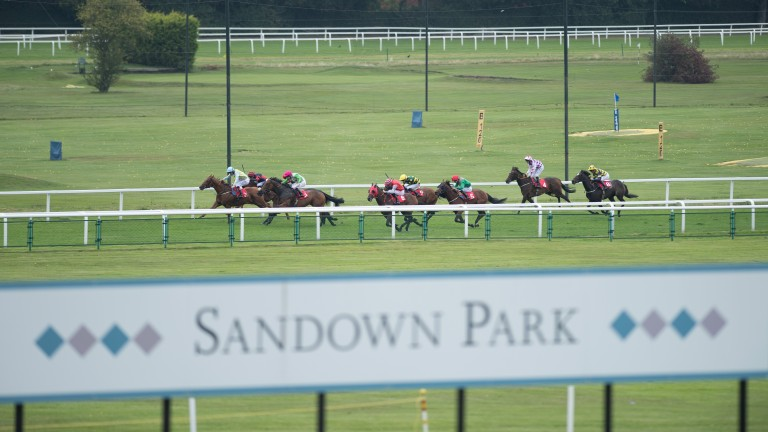 The going has eased at Sandown after overnight rain