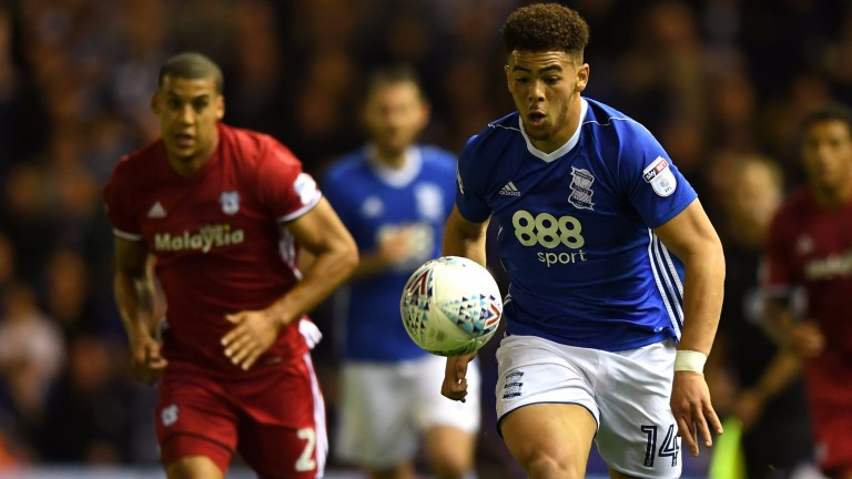 Che Adams scored Birmingham's winner against in-form Cardiff