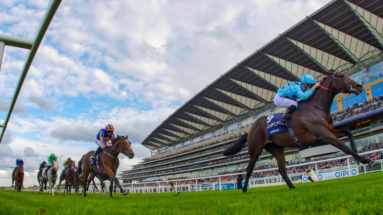 Antonio Caro's Almanzor sees off Found in the 2016 Qipco Champion Stakes