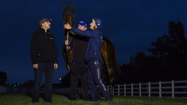 Trainer Chris Waller (left), Jockey Hugh Bowman (right) and strapper Umut Odemislioglu pose with Winx after a workout at Flemington