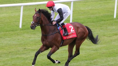 The John Gosden-trained Cracksman aims to emulate his father and win the Qipco Champion Stakes