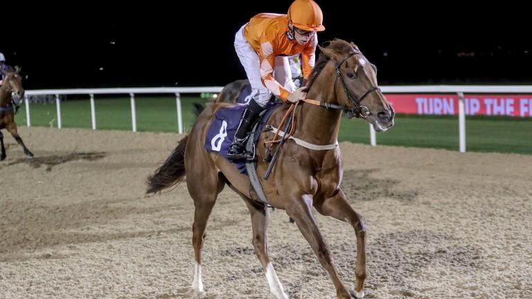 Kieran Shoemark winning on Line House at Newcastle