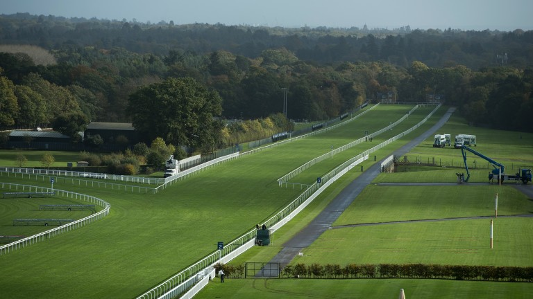 Calm before the storm: sunshine lights up the hallowed turf as Champions Day dawns