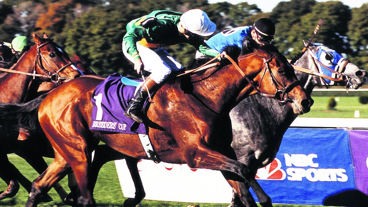Racing post betting site results movie pari mutuel betting explained photos