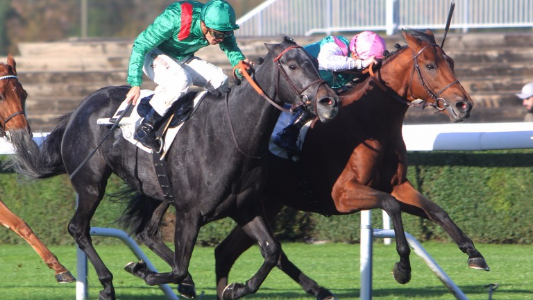 Ice Breeze (far side) lands the Prix Royal-Oak to give Nayef a third Group 1 winner