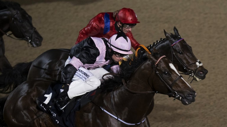 Take Cover (David Allan, far side) wins the Listed Mercury Stakes from Hit The Bid at Dundalk on Friday