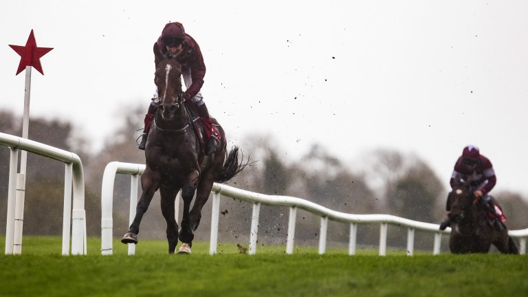Pallasator, pictured making a winning debut for Gordon Elliott in a Punchestown charity race, makes his hurdling bow at Naas
