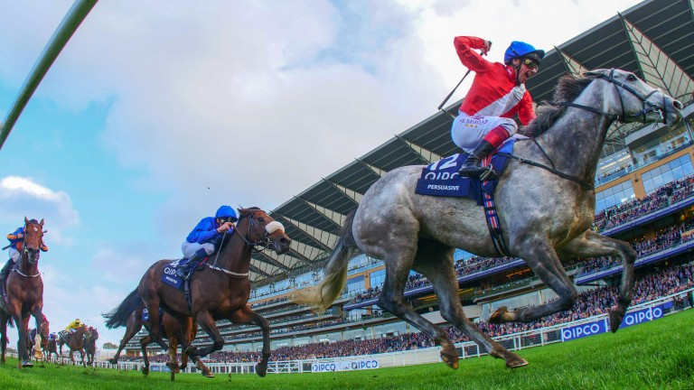 Persuasive: the Owenstown Stud graduate defeats a high-class field to win the Queen Elizabeth II Stakes