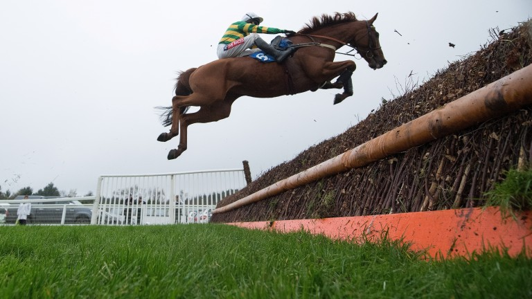 Yanworth (Barry Geraghty) puts in a big leap at the first fence in the Best Mate Beginners' Chase at Exeter