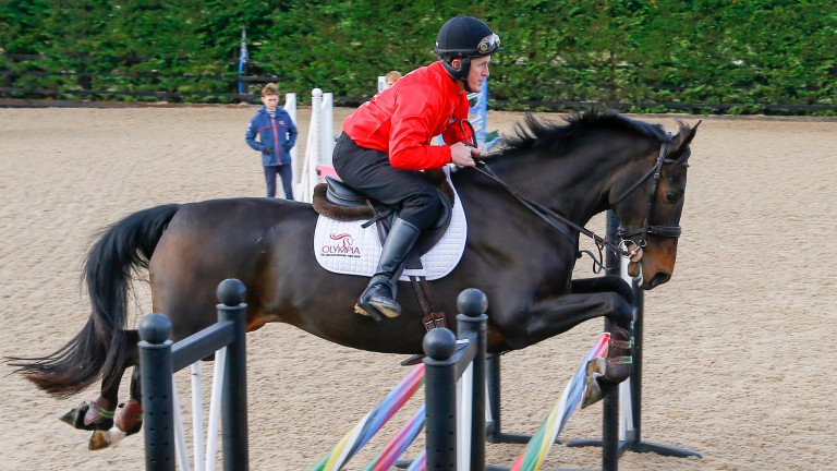 AP McCoy shows he's still got it during a show jumping lesson with Olympian Graham Fletcher
