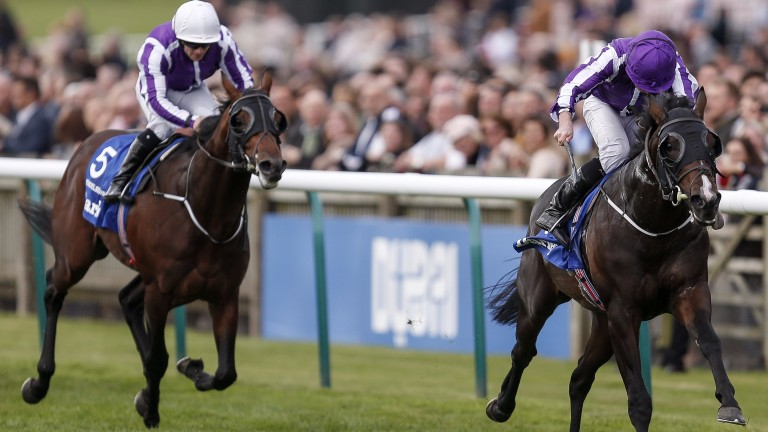 US Navy Flag runs out an emphatic winner of the Dewhurst Stakes