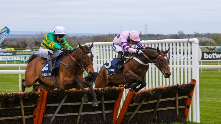 Defi Du Seuil (left) has the Champion Hurdle as his main objective