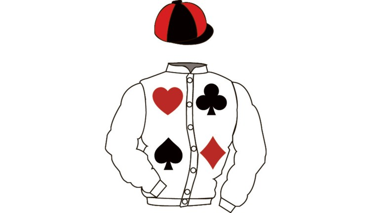 Play your cards right: lot 97 features the four card suits