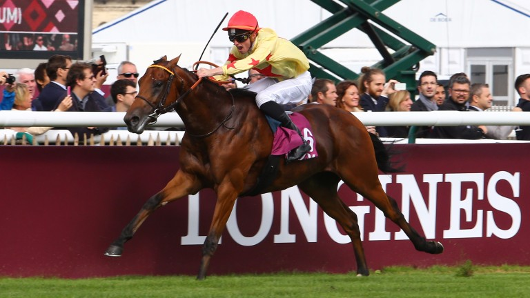 National Defense: On his way to an impressive victory in the Prix Jean-Luc Lagardere