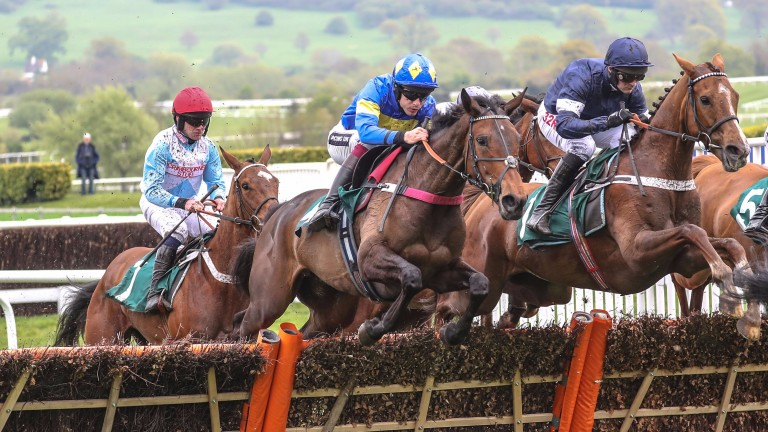 Brillare Momento (centre) won a Listed race on the New Course in April and returns to Cheltenham on Friday.