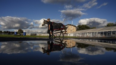 WARWICK, ENGLAND - OCTOBER 05: A runner is reflected in a puddle in the pre parade ring at Warwick racecourse on October 5, 2017 in Warwick, United Kingdom. (Photo by Alan Crowhurst/Getty Images)
