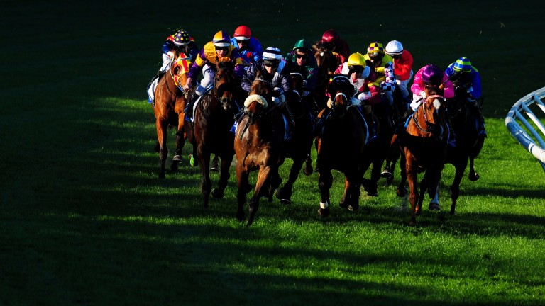The Manikato Stakes at Moonee Valley racecourse was full of drama from the off.