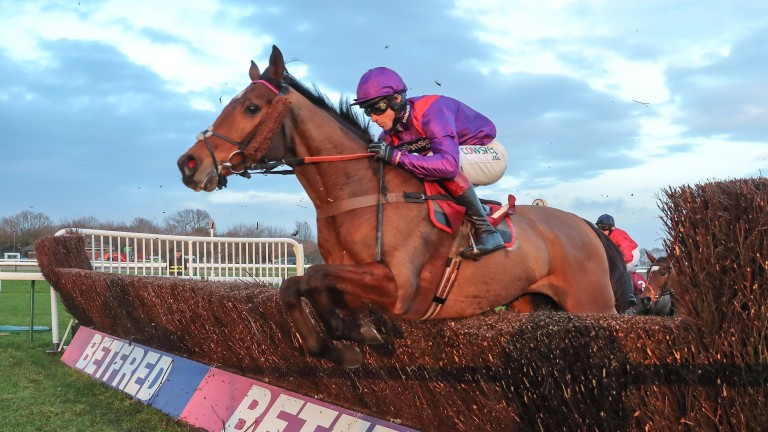 Wonderful Charm: running him in the Grand National was an exception, says Paul Nicholls