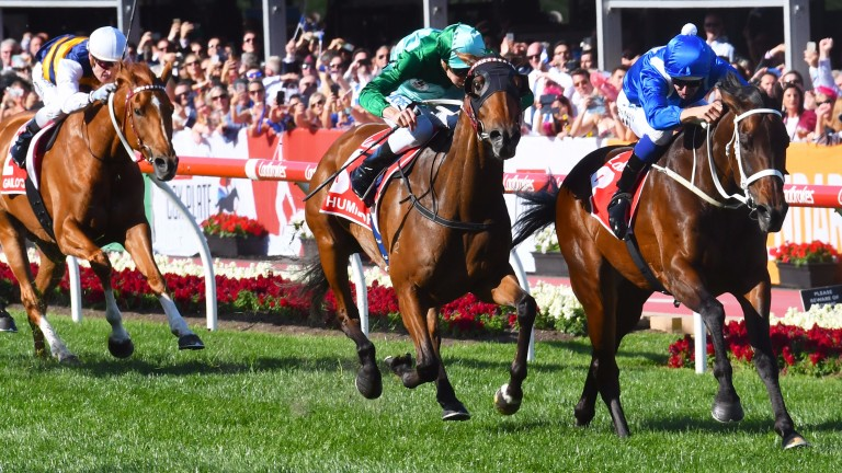 MELBOURNE, AUSTRALIA - OCTOBER 28:  Hugh Bowman riding Winx defeats Blake Shinn riding Humidor in Race 9, Ladbrokes Cox Plate  during Cox Plate Day at Moonee Valley Racecourse on October 28, 2017 in Melbourne, Australia.  (Photo by Vince Caligiuri/Getty I