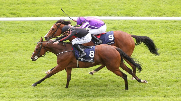 Jet Setting (8) repels the challenge of Minding to land the Irish 1,000 Guineas