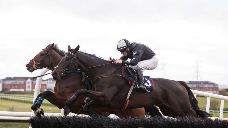 Midnight Stroll (near) is one of the big fancies following a good fourth at Leopardstown over Christmas