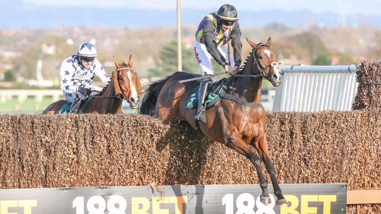 Popular chaser The Romford Pele lost his life at Uttoxeter on Sunday