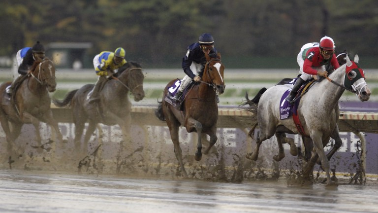 Our last glimpse of George Washington, battling the kickback in the Monmouth Park slop