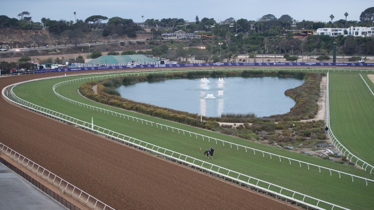 Tight turns on the turf: a cool overcast morning at Del Mar, where the Breeders' Cup is held for the first time on Friday and Saturday