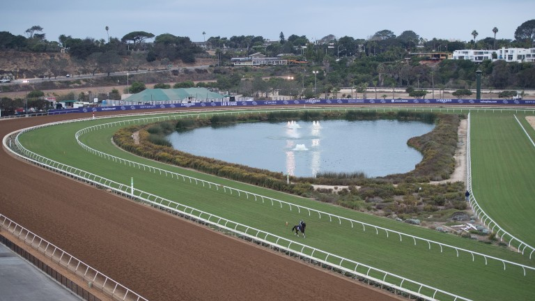 Tight turns on the turf at Del Mar on a cool overcast morning Del Mar