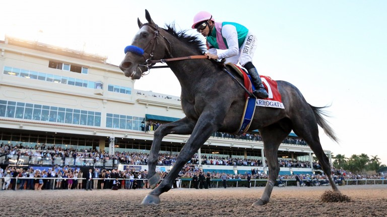 Arrogate: will the Dubai World Cup hero finish his year on a high?
