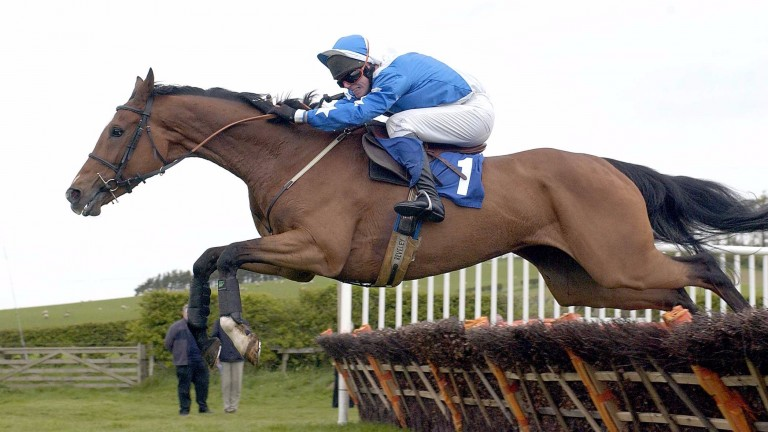 Tees Components: won the Grade 2 River Don Novices' Hurdle at Doncaster under Alan Dempsey in 2003