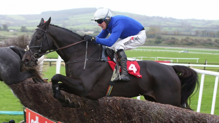 Woodland Opera: will be wearing blinkers at Punchestown