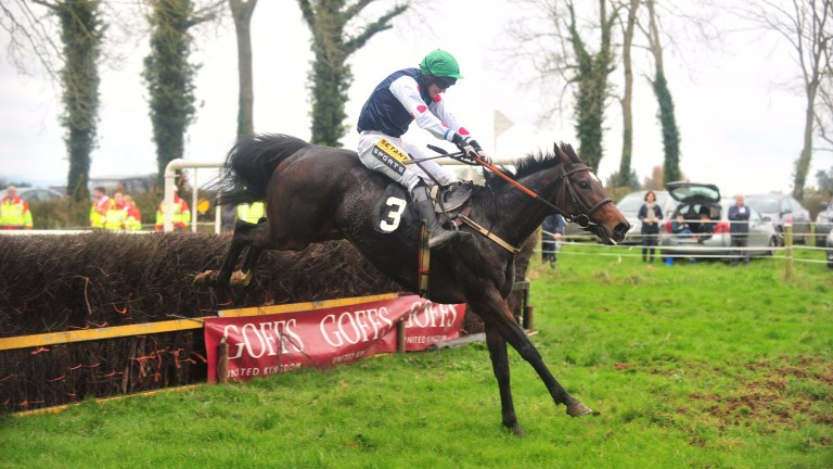 Chapter Two and Johnny King complete a fine sequence for runners from the season's first open with success at Lisronagh
