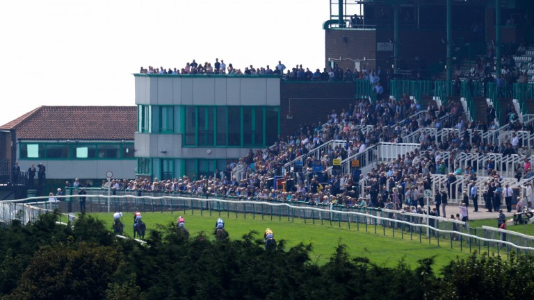 Brighton: seven-race card at the seaside track this afternoon