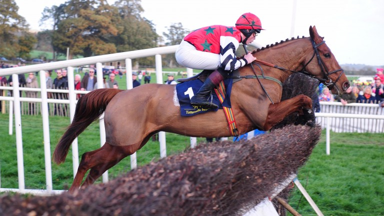 Cavite Beta and Neil Bashford make a big impression in the open at Dowth Hall