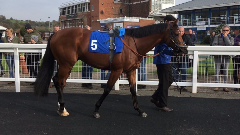 Ispolini represents Charlie Appleby and William Buick