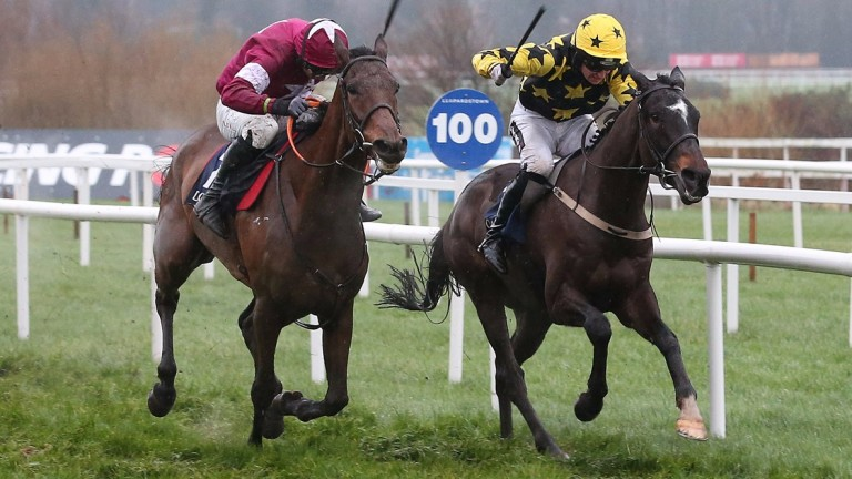Bacardys (right) is a son of high-class stayer Coastal Path