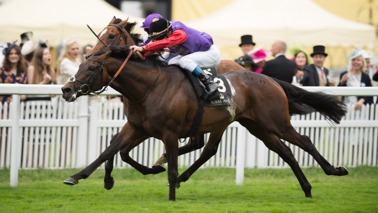 Dartmouth sees off Highland Reel in the 2016 Hardwicke Stakes at Royal Ascot